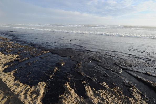 За разлив нефти капитану судна Rena предъявлен штраф в 80 тысяч долларов. Фоторепортаж с побережья