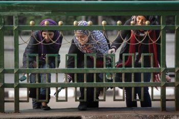 Египтяне меняют не только политическую систему, но и меняются сами