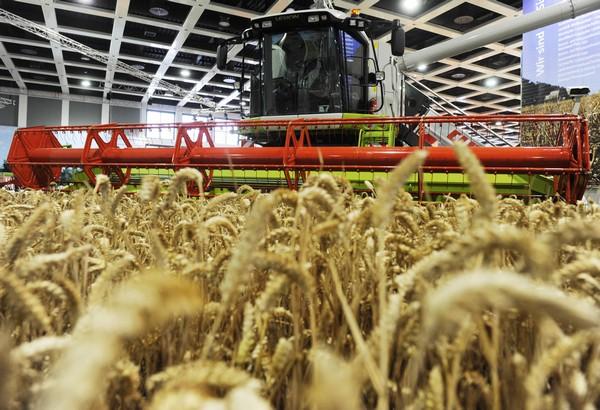 161 180110 Berlin4 - В Берлине проходит международная сельско хозяйственная выставка. Фоторепортаж