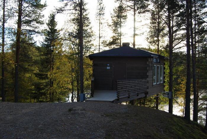 161 Hackspett sommarbild 1 - Шведский гостиничный комплекс построен по образцу птичьих гнёзд