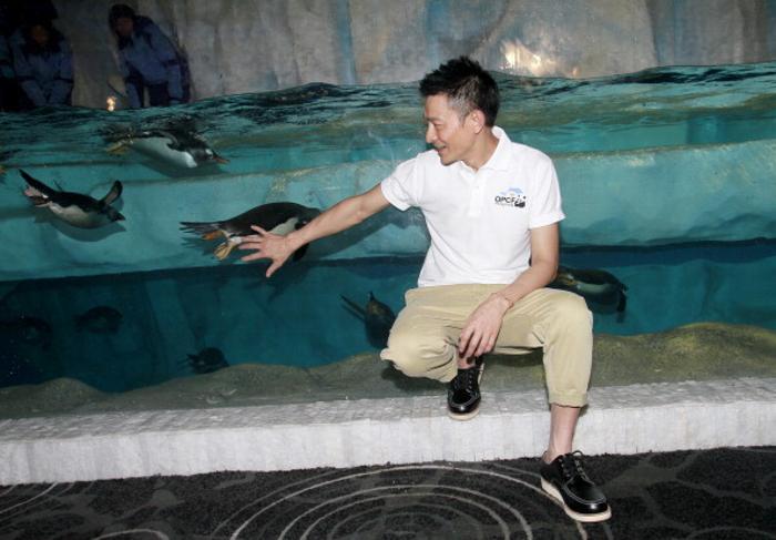 В Гонконге открылся парк с полярными животными