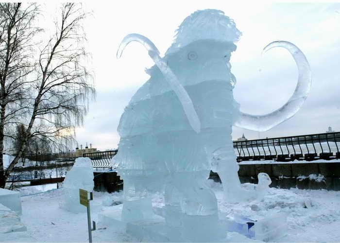 Зоопарк Хельсинки пополнится ледяными животными