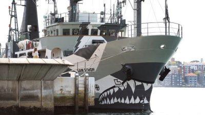 Африканских рыбаков спасли те, кто преследовал их за браконьерство (видео)