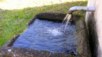 Действительно ли водопроводная вода в Москве питьевая?
