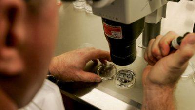 Лекарство для пациентов с сахарным диабетом нарушает работу щитовидной железы