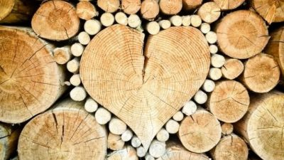Какие бывают дрова?