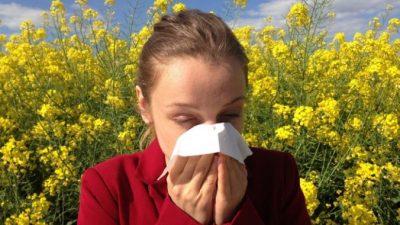 Типы аллергии и способы борьбы с болезнью