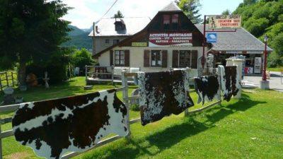 Шкура коровы — уникальный предмет интерьера