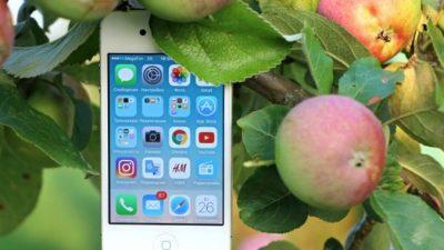 Где приобрести запасной аккумулятор для iPhone