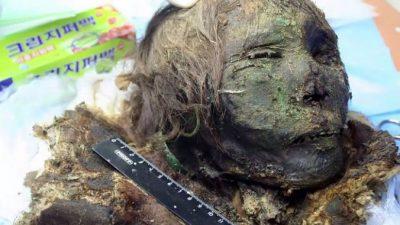 Мумия «Полярная принцесса» найдена в древнем мужском захоронении в Сибири