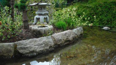 Как создать пруд на садовом участке