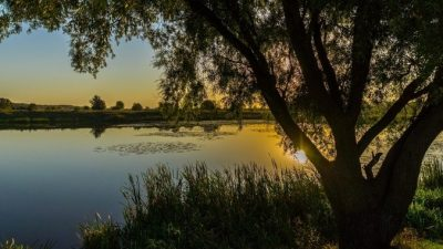 Молодая мама из Пермской области бросилась в пруд, чтобы… Сын гордится её поступком