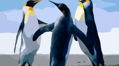 Зоопарк пригласил посетителей посмотреть на пингвинов… Это было нечто!