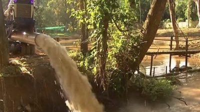 Ради спасения детей из затопленной пещеры Таиланда более 100 фермеров добровольно пожертвовали своим урожаем