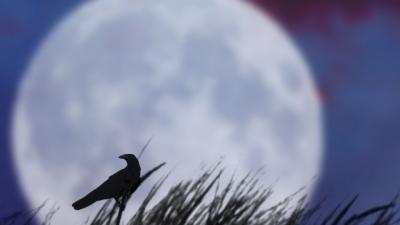 Планетологи предупредили о лунотрясениях