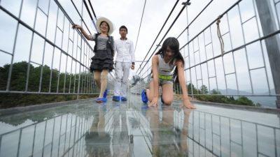 Стеклянный мост над пропастью в Китае треснул под ногами у туристов (видео)