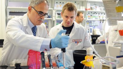 Специальные бактерии могут вырабатывать витамин А прямо в кишечнике