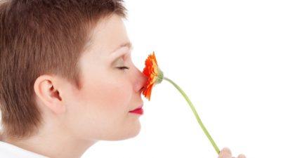 Собака часто обнюхивала красноватое пятно на носу хозяйки. Оказалось, это рак