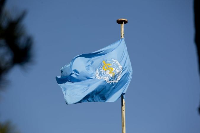 Флаг Всемирной организации здравоохранения United States Mission Geneva/commons.wikimedia.org/CC BY 2.0 | Epoch Times Россия
