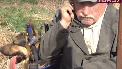 (Видео) Преданный пёс помогает хозяину передвигаться на инвалидной коляске, хотя его никто никогда не учил