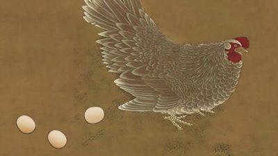 Мать явилась сыну во сне после смерти и рассказала, почему переродилась курицей