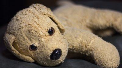 2-летняя девочка забыла в отеле плюшевого пёсика. Она скучала, а он совсем нет!