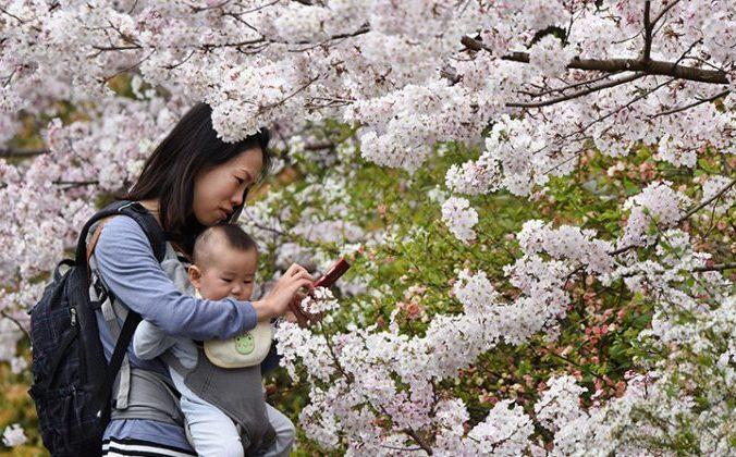 Мать в Токио смотрит на свой смартфон во время прогулки с ребёнком 29 марта 2015 года. Фото: Toru Yamanaka/AFP/Getty Images | Epoch Times Россия