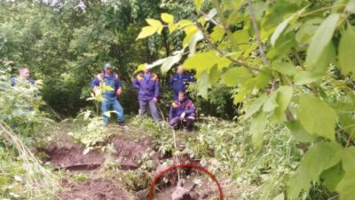 (Видео) Спасатели Нижегородской области столкнулись с необычным потерпевшим. С лосём!