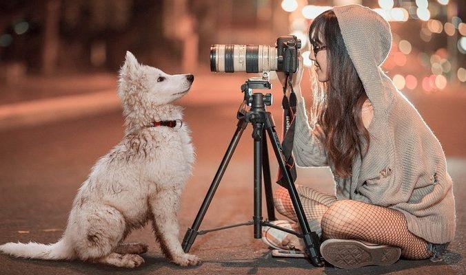 SarahRichterArt/Рixabay/Pixabay License | Epoch Times Россия