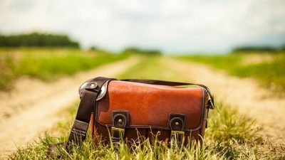 История дамской сумочки