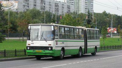 История московских автобусов