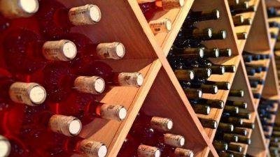 Винные шкафы от бренда – залог длительного хранения слабоалкогольной коллекции