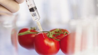 Долой франкенфуд! Более половины европейских cтран отказались от ГМО