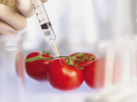 ГМО-продукты. Фото: sovetnika.net   Epoch Times Россия