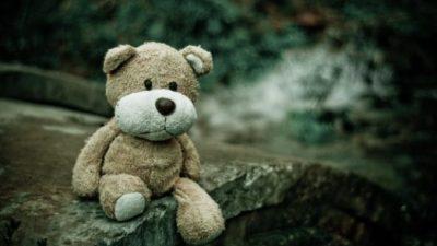 Щенок с разбитым сердцем цеплялся за плюшевого мишку, с которым хозяева отдали его в приют
