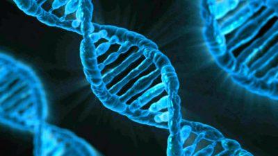 Мы по-прежнему не знаем, как гены связаны с болезнями