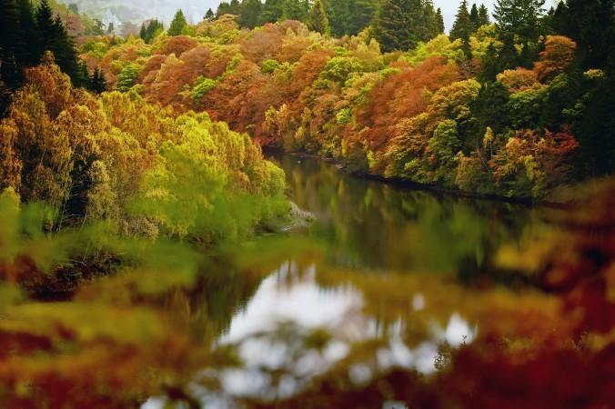 25 октября: на озере Лох-Фаскали в Питлохри, Шотландия. Фото: Jeff J Mitchell/Getty Images | Epoch Times Россия