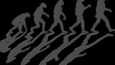 260 000-летний череп, найденный в Китае, может переписать историю эволюции
