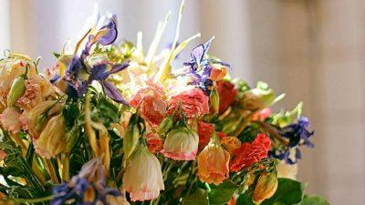 Выбираем цветы для дам