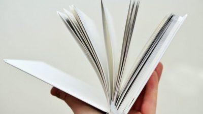 В Москве пройдёт День чтения, посвящённый французской литературе