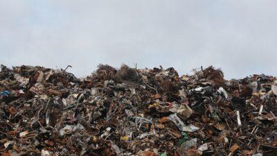 Рост мусорных свалок — проблема Подмосковья