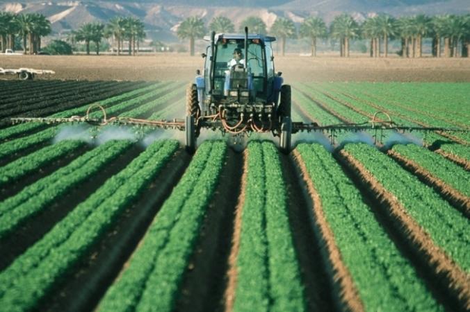 Фермер жертвует овощи нуждающимся во время карантина, чтобы помочь и им, и себе