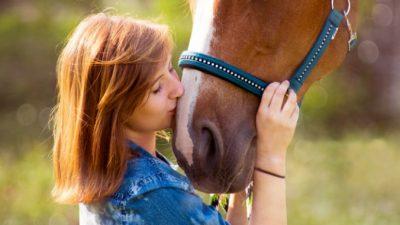 (Видео) Лошадь услышала плач хозяйки и принесла ей клочок сена — вместо платочка