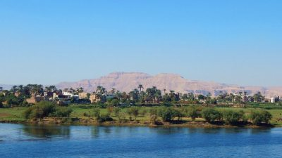 Египтянка 43 года притворялась мужчиной ради работы