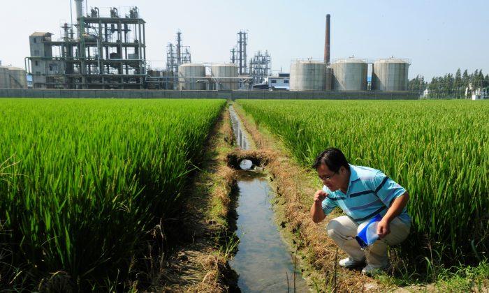 Китайский экологический активист У Лихонг проверяет качество воды в оросительном канале возле химического завода рядом с рисовыми полями и на берегу озера Тайху в Исине в провинции Цзянсу, 14 сентября 2011 г. (MARK RALSTON / AFP / Getty Images) | Epoch Times Россия