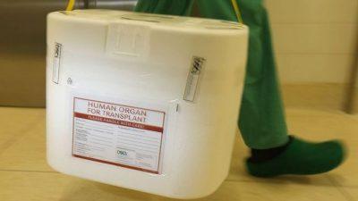 Учёные Китая отвергли обвинения последователей Фалуньгун об «изъятии донорских органов у живых людей»