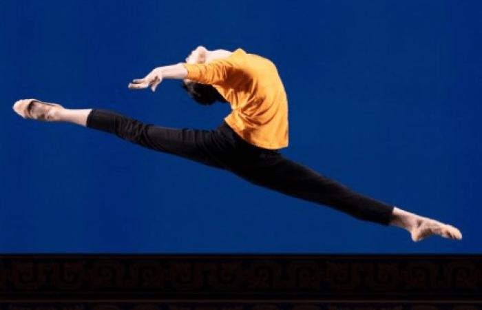 Линь стремится передать через танец сложные эмоции её героини. (Edward Dye | Epoch Times Россия