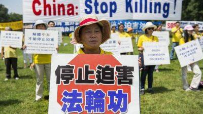 Правозащитник Килгур: «Для продажи одной почки в Китае убили восемь человек»