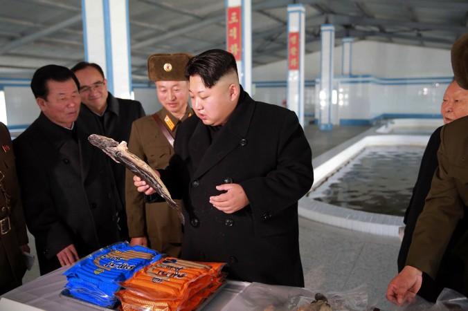 Северокорейский лидер Ким Чен Ын инспектирует сомовую ферму 12 декабря 2015 г. Недавно в Северной Корее началась кампания против китайцев, которых обвиняют в шпионаже и других преступлениях. Фото: KNS/AFP/Getty Images | Epoch Times Россия