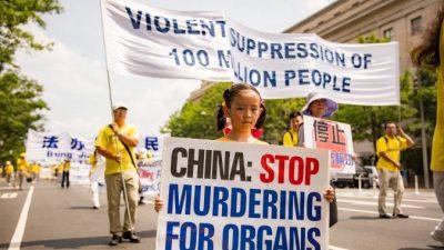 Остановить насильственное извлечение органов в Китае требуют граждане во всём мире